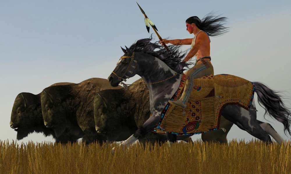 Индеец на коне и стадо буйволов