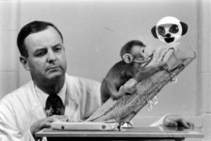 Гарри Харлоу с обезьянкой