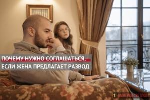 Что делать если жена предлагает развод